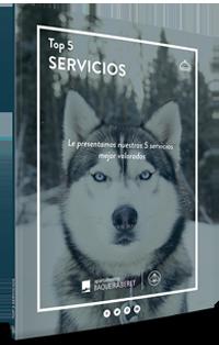 top-5-servicios